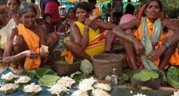Socio-economic life of the Lodhas: A primitive tribal group of Odisha