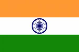 Hindi Article on India
