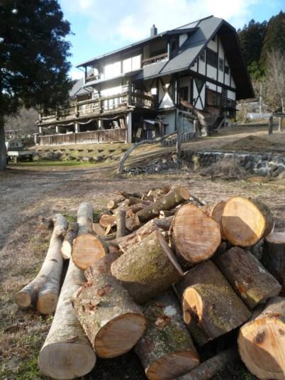 家の前の原木