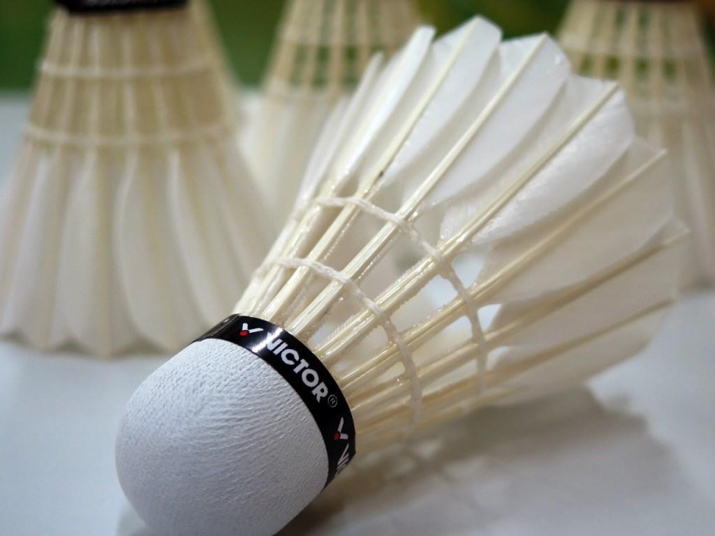 badminton-659910_1280