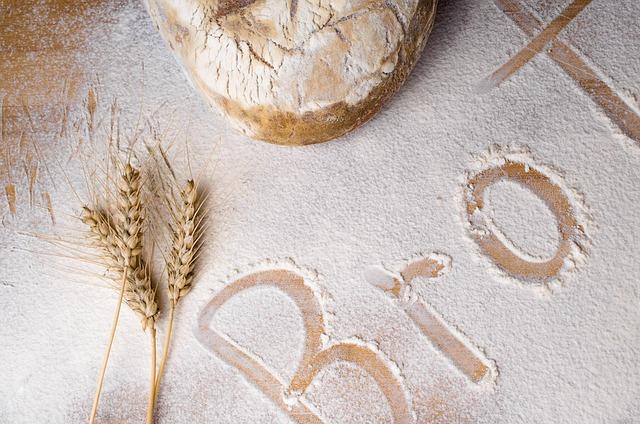 bread-1001362_640