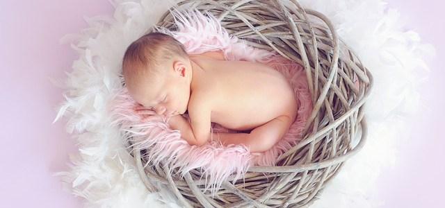 baby-784608_640