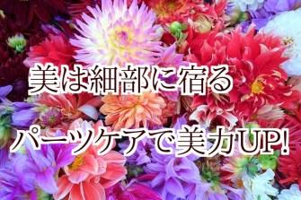 tAUvCXEXirc86Ce1451726843_1451727106 (1)