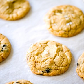 Blueberry-Hazelnut Bars Recipe — Dishmaps