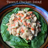 Peanut Chicken Salad (3)