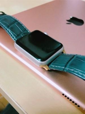 iPadProのローズゴールドとの比較