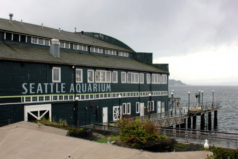 View from the Seattle Aquarium in Seattle, Washington, United States via ZaagiTravel.com