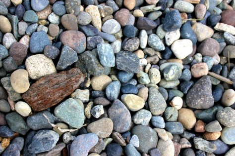 Driftwood and stones on the beach in White Rock, British Columbia, Canada via ZaagiTravel.com