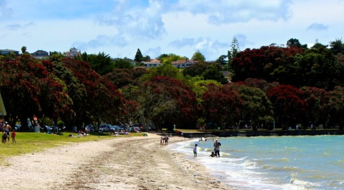 A-Z Challenge: Jaunt to Cockle Bay Beach