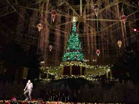 Gaylord Palms Holiday decor