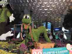Pluto topiary at night