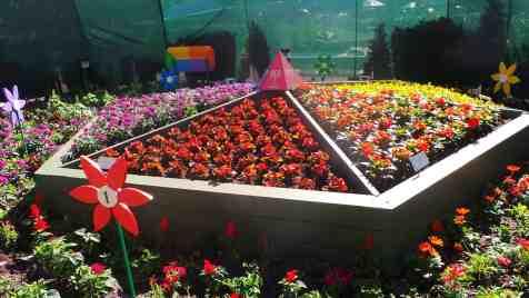 The color wheel in garden form