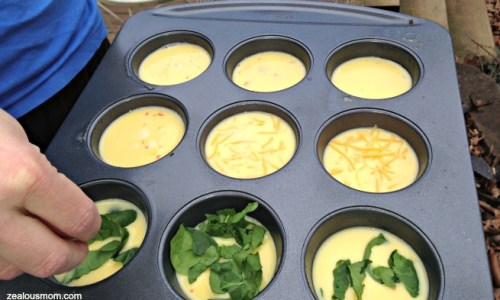 Delicious muffin tin frittatas! #breakfast recipes
