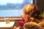Rozijntjes in de trein