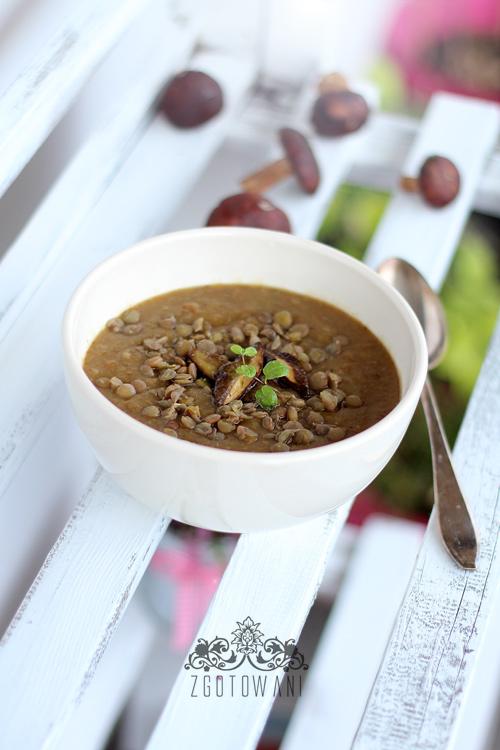 zupa-krem-z-grzybow-lesnych-z-soczewica-6