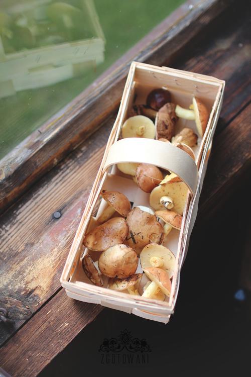 kasza-gryczana-z-lesnymi-grzybami,-cukinia-i-fasola-10