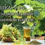 История » водки » и » пива «