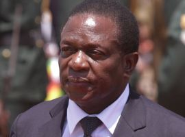 Zim VP sues Grace Mugabe ally for $3m