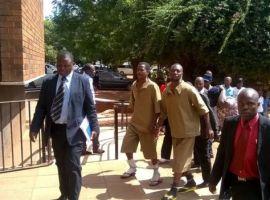 Zimbabwe activist jailed over Mugabe dairy bomb plot