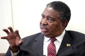Vice President Mphoko