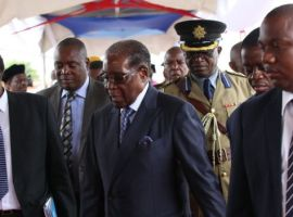 Mugabe makes first public appearance