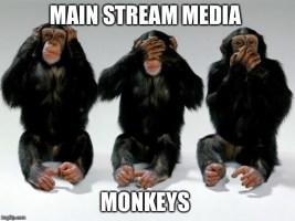 Monkeys Do