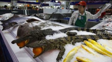 Here Are 15 Things You Can Only Buy At A Wal Mart In China. #14 Is All Kinds Of Weird.