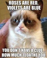 Grumpy Cat Poetry