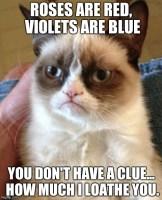 Grumpy Cat Poetry