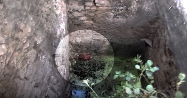 They Heard Yelps Coming From A Deep Well. What They Found Will Break Your Heart