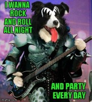 Hope I got that song stuck in your head!!! Rock Week...A pinheadpokemanz Event