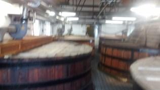 W Ardbegu jest 6 niezbyt dużych kadzi fermentacyjnych, tradycyjnie z sosny oregońskiej