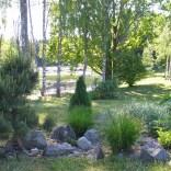 """Я очень люблю сады в стиле """"дикой природы"""", где всё кажется настолько естественным, будто рука человека и не прикасалась"""