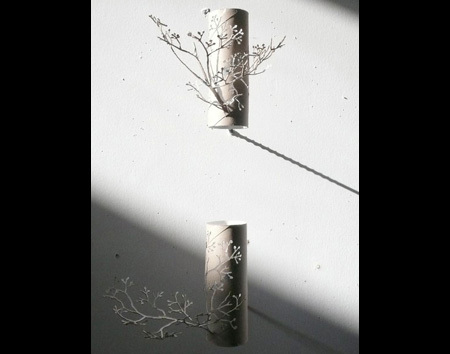 rolka-drzewa-2