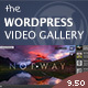 Download Video Gallery Wordpress Plugin /w YouTube, Vimeo from CodeCanyon