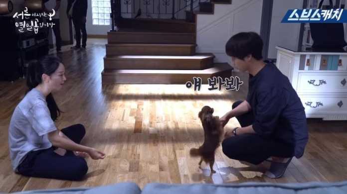 """- Shin Hye Sun Yang Se Jong 1 - Watch: Shin Hye Sun And Yang Se Jong Have Fun Filming Silly And Romantic Scenes In Making Video For """"30 But 17""""  - Shin Hye Sun Yang Se Jong 1 - Watch: Shin Hye Sun And Yang Se Jong Have Fun Filming Silly And Romantic Scenes In Making Video For """"30 But 17"""""""