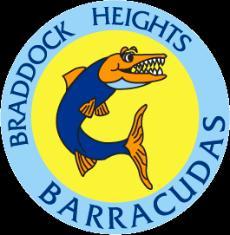 Barracuda Team logo