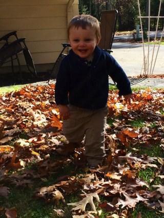 Loving Fall!