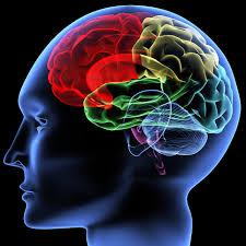 Votre état d'esprit et votre vision d'être = est-ce la clé du succès?
