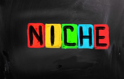 Quelle Niche & Concept pour mon site de rencontre…?