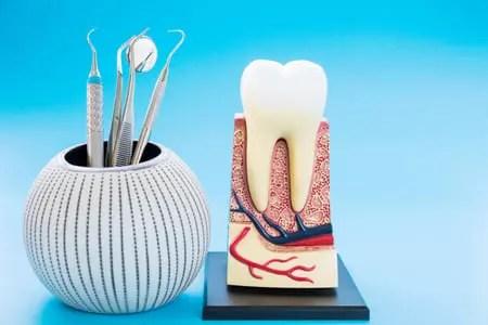 Benefícios do Canal Dentário