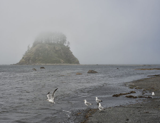 """""""Cape Alava (7857550328)"""" by John Fowler from Placitas, NM, USA - Cape AlavaUploaded by russavia. Licensed under CC BY 2.0 via Wikimedia Commons - http://commons.wikimedia.org/wiki/File:Cape_Alava_(7857550328).jpg#/media/File:Cape_Alava_(7857550328).jpg"""