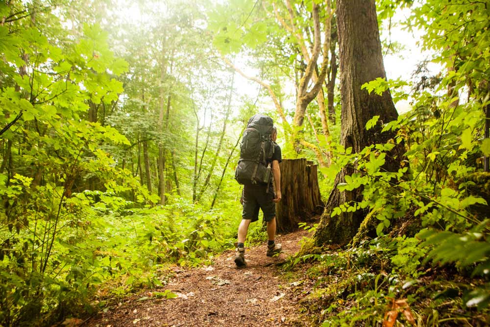 Northwest backpacking hikes