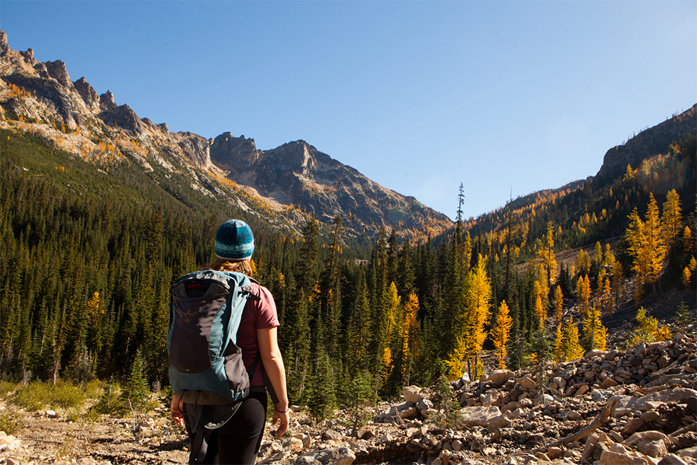 Autumn's True Gold Hiking to See Washington's Alpine Larches-alpine larch hikes