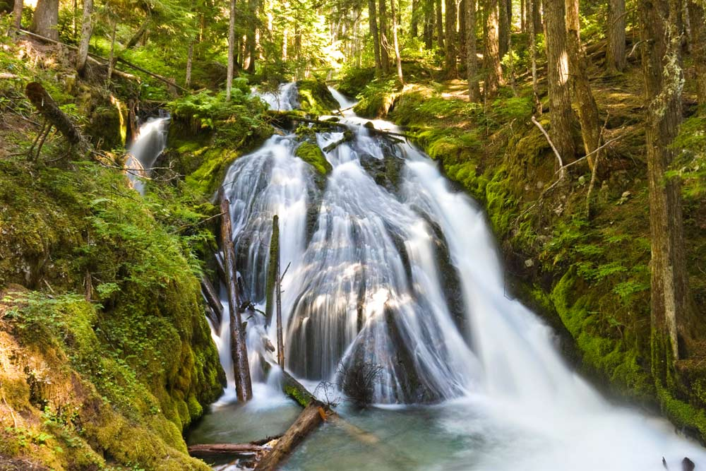 spring waterfall hikes little zigzag falls