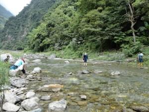 1217林管處溪流監測調查工作1