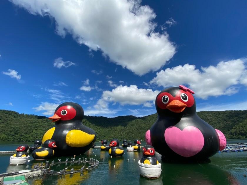 2020紅面鴨fun暑假-紅面鴨家族水上裝置藝術-照片1