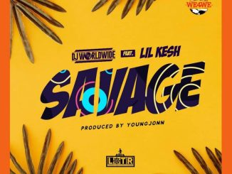 DJ Worldwide ft. Lil Kesh & Young Jonn – Savage
