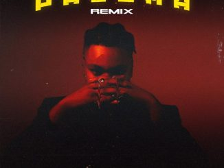 DJ Tunez ft. D3AN, Alpha P – Paloma (Remix)