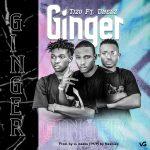 Tizo Ft. Dnelz — Ginger